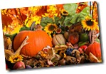 Fall-Harvest-Awesome-Wallpapers